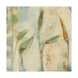Peace Lily 4 Giclee Print by Maeve Harris