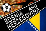 Brazil 2014 - Bosnia and Herzegovina Photo