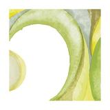 Chris Paschke - Lime Geometric II Digitálně vytištěná reprodukce