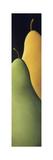 Pears 2 Giclee Print by Jaime Ellsworth