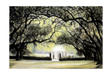 Southern Sojourns III Giclee Print by Jill Tishman