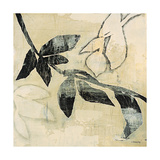 Vine Giclee Print by David Dauncey