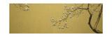 Magnolia Impression giclée par Joseph Jackino