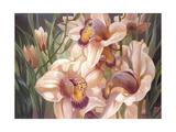 Our Serene Cymbidium Giclee Print by Elizabeth Horning