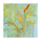 Peace Lily 2 Giclee Print by Maeve Harris