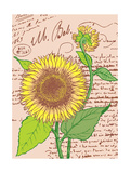 Sunflower Art by Jill Meyer