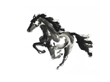 Horse H1 Giclée-tryk af Chris Paschke
