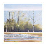 Striated Spaces Spring Giclee Print by Danna Harvey