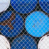 Blue Fence Photographic Print by Paul Edmondson
