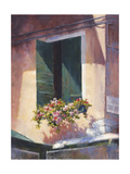 Green Shutters Giclee Print by David Marty