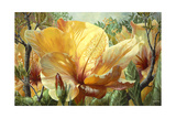 Golden Hibiscus Giclee Print by Elizabeth Horning