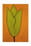 Bloom 1 Giclee Print by Jaime Ellsworth