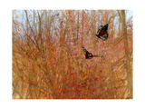 Spring Migration Giclee Print by Miguel Dominguez