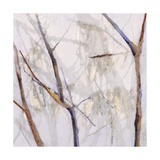 Branches of a Wish Tree D Prints by Danna Harvey