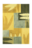 Fern Feathers Prints by Mary Margaret Briggs