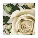 Vintage Florals I Giclee Print