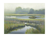 Morning at Edmonds Marsh Giclee Print by David Marty