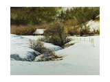 Carmel Valey Winter Giclee Print by Miguel Dominguez