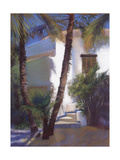 Baja Light Giclee Print by Pat Meras