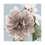 Vintage Florals D Giclee Print