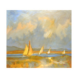 Whidbey Island Beach Giclee Print by Don Tiller