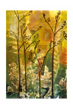 Understory I Giclee Print by April Richardson