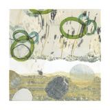 Pathways III: Shore Giclee Print by David Owen Hastings