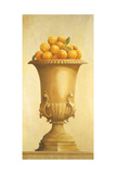 Oranges in Vase Giclee Print by Hampton Hall