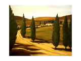 Along a Tuscan Road Giclee Print by Tim Howe
