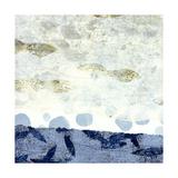 Water's Edge II Giclee Print by David Owen Hastings