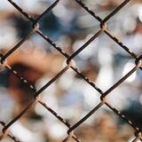 Fence Study 2 Photographic Print by Paul Edmondson
