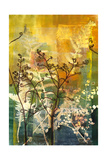 Understory II Giclee Print by April Richardson