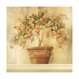 Orange Topiary Print by Hampton Hall