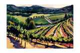 Kieken Vineyard Giclee Print by Janet Vanderhoof