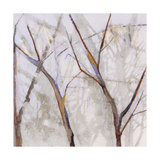 Branches of a Wish Tree A Giclee Print by Danna Harvey