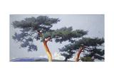 Landscape Study I Giclee Print by Sang-Duk Park