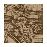 Acanthus Print by Jill Meyer
