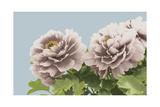Vintage Florals B Giclee Print