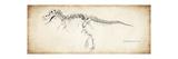 Tyrannosaurus Rex Giclee Print