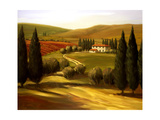 Through the Hills of Tuscany Giclee Print by Tim Howe