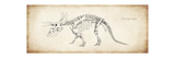 Triceratops Elatus Giclee Print
