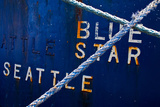 Blue Star Seattle Premium Photographic Print by Mimi Payne