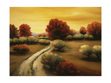Beyond the Pathway Giclee Print by Tim Howe