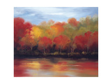 Changing Seasons Giclee Print by Tim Howe