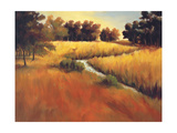 Meandering Stream Giclee Print by Tim Howe