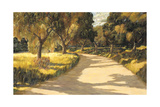 Palos Verdes Highland Giclee Print by Don Munz