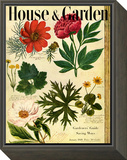 House & Garden Cover - January 1948 Framed Print Mount by Jacob Stauffer