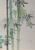 Bambus Limitierte Auflage von David Lee