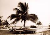 Havanna III Premium Giclee Print by Barbara Dombrowski