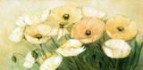 Tender Poppies Premium Giclee Print by Elisabeth Krobs